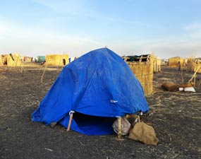 Temporary tarp shelter, Melut, South Sudan